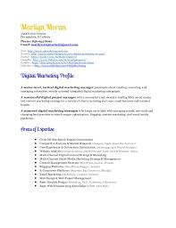 marketing manager resume digital marketing manager resume marilyn