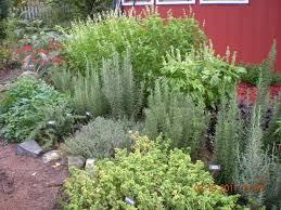 herb garden design images home outdoor decoration
