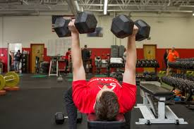 our top 5 exercises to shape your arms dynamic strength and