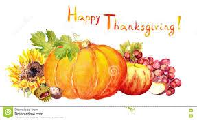 Uva Thanksgiving Diseño De La Acción De Gracias Frutas Verduras Calabaza