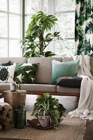 Best  Tropical Interior Ideas Only On Pinterest Tropical - Nature interior design ideas