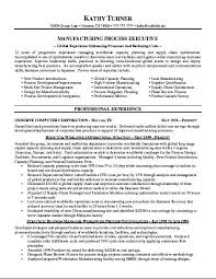 sample good resume pamelas sample high student resume