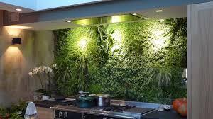 indoor green wall outdoor greenwall videos