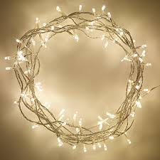 indoor lights with 100 warm white leds on 8m of clear cable