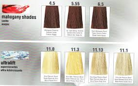 mahogany hair color chart color charts welcome to terme beauty