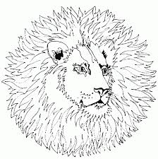 coloring pages animal coloring pages free and printable