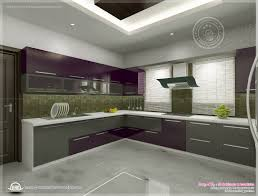 Cupboard Designs For Kitchen by Kerala Home Design Floor Plans Kitchen Interior Views Ss Kitchen
