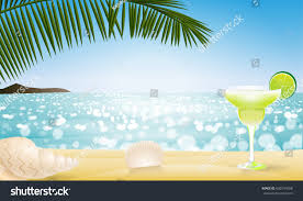 holiday cocktails background sunny summer season realistic palm leaf stock illustration