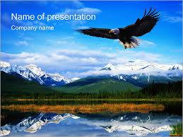 animals u0026 wildlife powerpoint templates u0026 backgrounds google