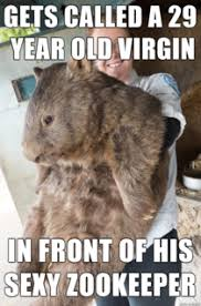 Wombat Memes - bad luck wombat meme guy