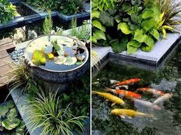 fish pond design ideas small back yard fish ponds small garden