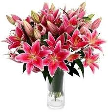 stargazer bouquet stargazer lilies bouquet in bethesda md ariel bethesda florist