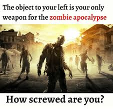Zombie Apocalypse Meme - the object to your left is your only weapon for the zombie