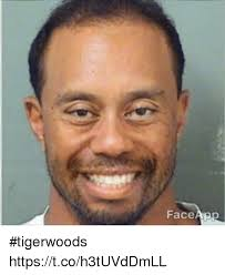 Tiger Woods Meme - face ap tigerwoods httpstcoh3tuvddmll meme on sizzle