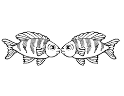 rainbow fish kissing coloring pages rainbow fish kissing coloring