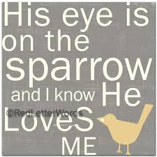 his eye is on the sparrow faith inspired bible verse