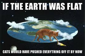 Amusing Memes - some amusing memes funny things conspiracy flat earth etc