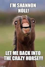 Australian Memes - i m shannon noll let me back into the crazy horse imgflip