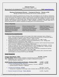 Sample Management Resumes by Business Development Manager Cv Template Sample Resume For
