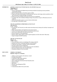 resume format for accountant travel accountant resume sles velvet