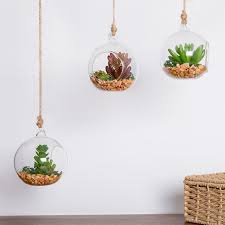 3 pack hanging glass globe plant terrarium vase with faux succulent