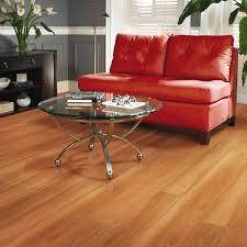 Best Wood Floor Mop Best Way To Clean Laminate Wood Floor Gallery Home Flooring Design