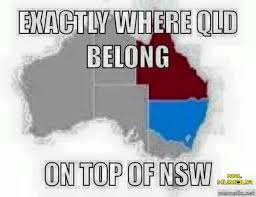 Nsw Blues Memes - nrl memes nrl pinterest nrl memes rugby and rugby league