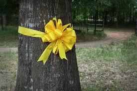 honoring service members starbucks yellow ribbon trees blue