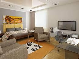 Remarkable Design Interior Studio Apartment A Sofa Apartement