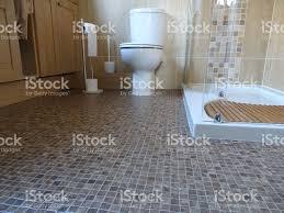 image of bathroom shower room with toilet mosaic vinyl flooring