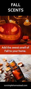 fall scents fall scents diy pumpkin spice made easy