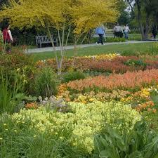 Huntington Botanical Gardens Pasadena by Best Time To Visit The Huntington Library And Gardens Pasadena