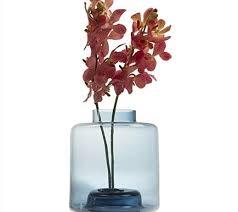 erba cipollina in vaso erba cipollina vaso grande stack grigio vasi decorativi