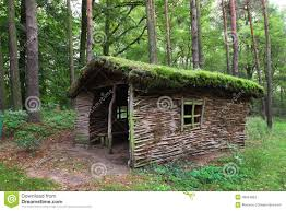 forest house stock photo image 46024993