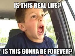 Slacker Meme - meme monday the frazzled slacker