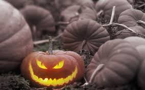 halloween pumpkin backgrounds wallpaper wiki