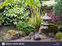 Japanese Rock Garden Designs by Rock Garden With Fern Japanese Lantern Shrubs And Trees Design By