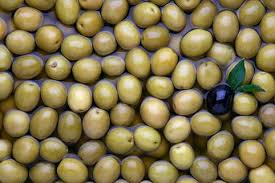 Indian Food Olives From Spain The Olive Festival Is Coming To The Uk