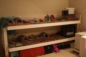 Where Can I Buy Bookshelves by Cage I Want A Wooden Guinea Pig Cage But Do Not Want To Make One