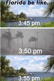 Florida Rain Meme - florida storms weather florida storms weather pinterest