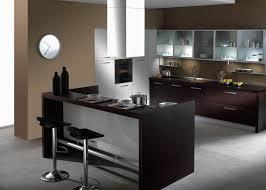 Dark Espresso Kitchen Cabinets Charming Espresso Kitchen Cabinets 2planakitchen