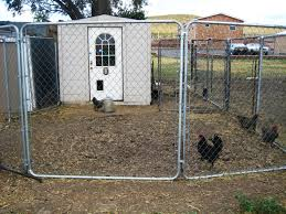 dreaming of building new farm style chicken coop backyard chickens