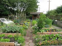setting up a beautiful garden u2013 loridyan com