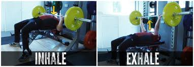Correct Technique For Bench Press Apply These Tips To Instantly Add Weight To Your Military U0026 Bench