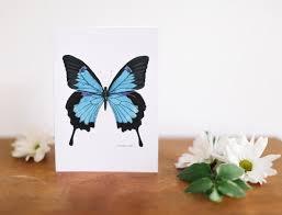 blue butterfly birthday card falling leaf card co
