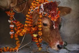How To Decorate Home In Diwali by Diwali Celebrations Dazzle Hindu Devotees Worldwide Pbs Newshour