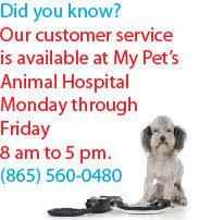 kidney function nf purina veterinary diets cat food