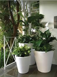 dot trudrop self watering planters gardener u0027s supply