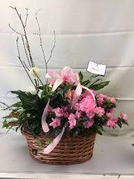 spring garden flower shop san antonio tx flower reviews