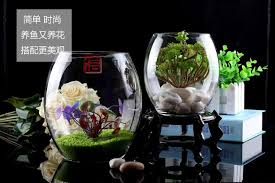 Goldfish Bowl Vase Aquarium Egg Shaped Glass Goldfish Bowl Turtle Tank Small Mini